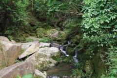 Shui Chuen O stream