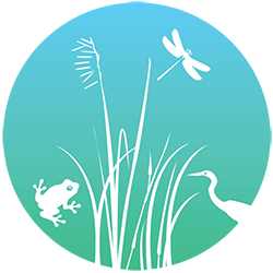 HKWCA – Hong Kong Wetlands Conservation Association
